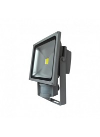 Projecteur LED avec détecteur 30W 6000K Gris VISION-EL